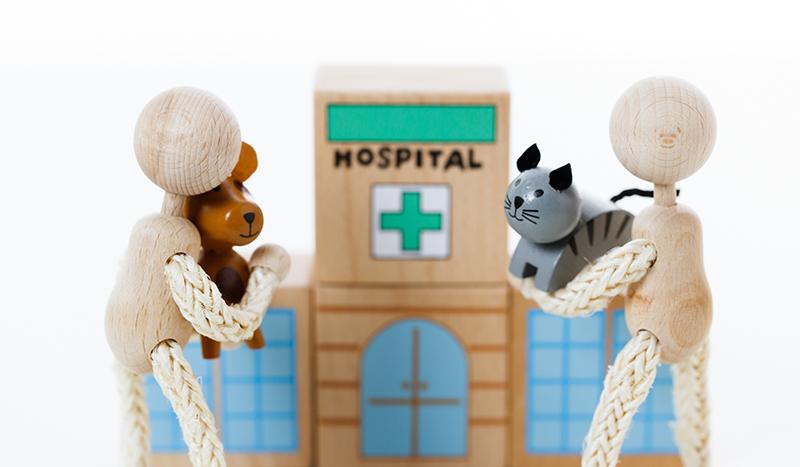 夜間救急の対応時間、応急処置についての案内などのコンテンツを設置